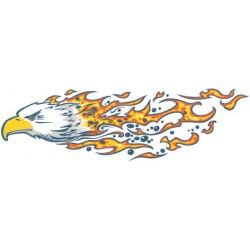 Sticker Tête Aigle