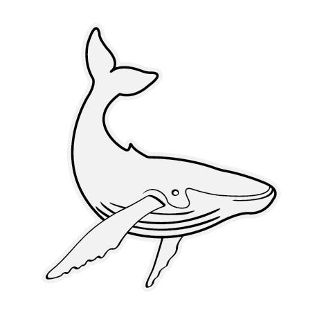 Sticker Whale 1